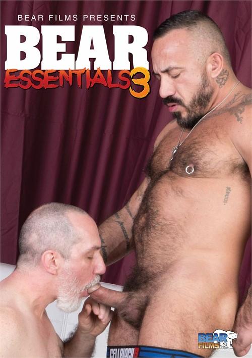 Bear Essentials 3 Boxcover