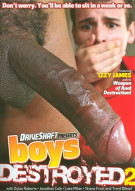 Boys Destroyed 2 Boxcover