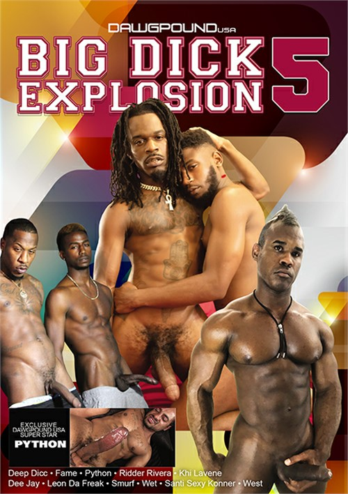 Big Dick Explosion 5 Boxcover