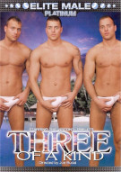 Three of a Kind Porn Video