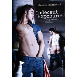 Indecent Exposures Sex Toy
