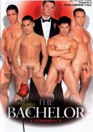 Bachelor, The Gay Porn Movie