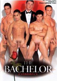 Bachelor, The image