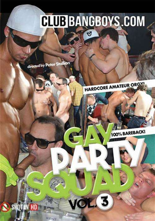 Gay Party Squad Vol. 3 Boxcover