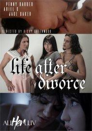 Life After Divorce image
