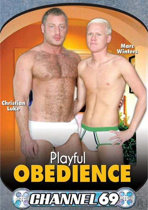 Playful Obedience image