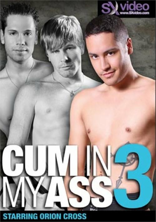 Cum In My Ass 3  Boxcover