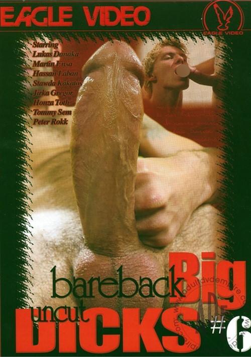 Bareback Big Uncut Dicks 6 Boxcover