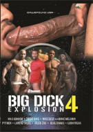 Big Dick Explosion 4 Boxcover