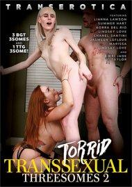 Torrid Transsexual Threesomes 2 image