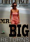 Mr. Big Returns Boxcover