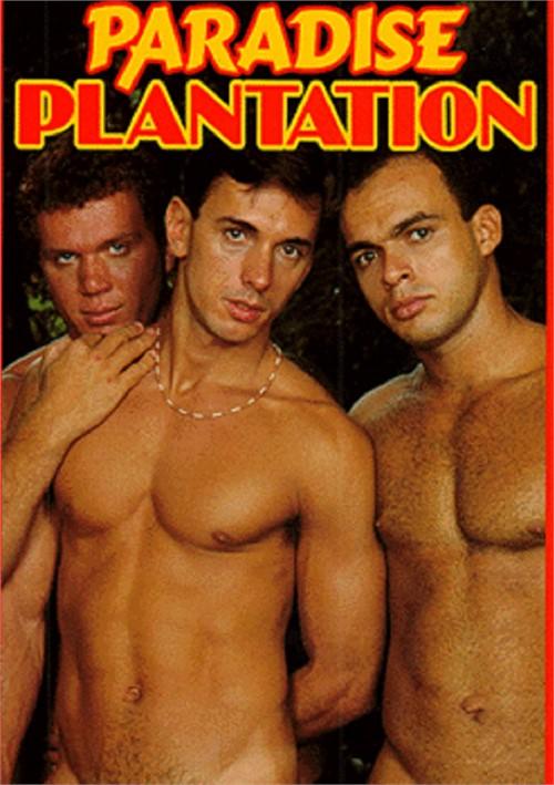 Paradise Plantation Kristen Bjorn Video Gay Porn Movies Gay Dvd Empire