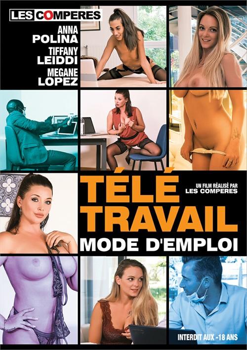 Teletravail Mode D'Emploi