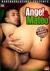 Angel & Mateo gay porn VOD from Bareback Latinoz Clips