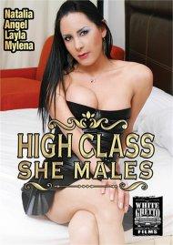 High Class She Males Porn Video