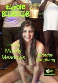 Mandy Meadows Birthday Gangbang image