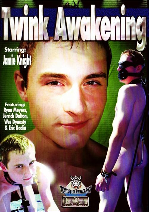 Twink Awakening Boxcover