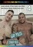 Gay Poles For Straight Holes 4 Boxcover