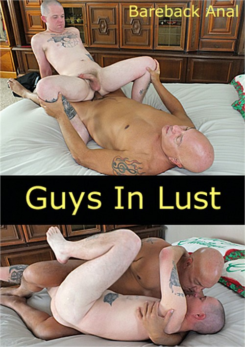 Guys In Lust Boxcover