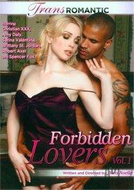 Forbidden Lovers Vol. 1 image
