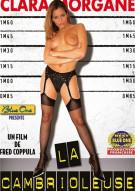 Burglar, The (French) Porn Video