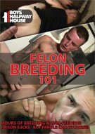 Felon Breeding 101 Gay Porn Movie