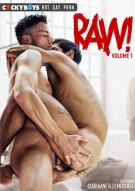 Raw! Vol. 1 Boxcover
