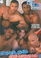 Gangland Gangbang 1 Boxcover