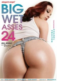 Big Wet Asses #24 Porn Video