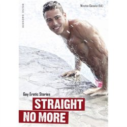 Straight No More: Gay Erotic Stories Sex Toy