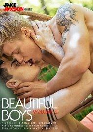 Beautiful Boys Volume 2 image