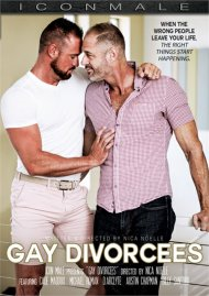 Gay Divorcees image