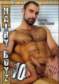 Hairy Boyz 10 Gay Porn Movie