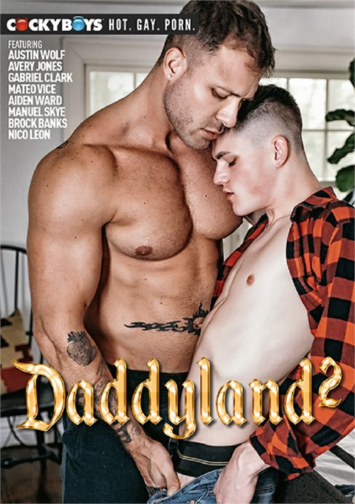 Daddyland 2 Boxcover