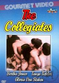 Collegiates, The image