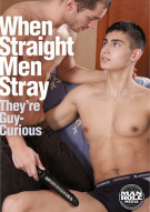 When Straight Men Stray Boxcover