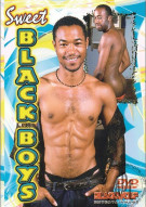 Sweet Black Boys Porn Movie