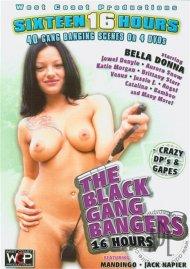 Black Gang Bangers, The (4-Pack) Porn Movie