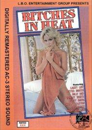 Bitches In Heat Vol. 16 Porn Movie