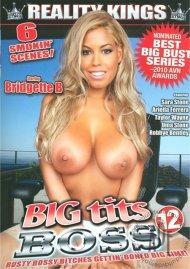 Big Tits Boss Vol. 12