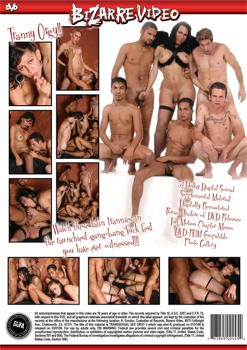 Transsexual sex orgy part