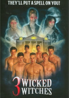 3 Wicked Witches Gay Cinema Movie
