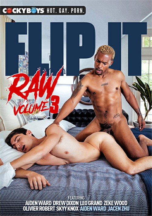 Flip It Raw Vol. 3 Boxcover