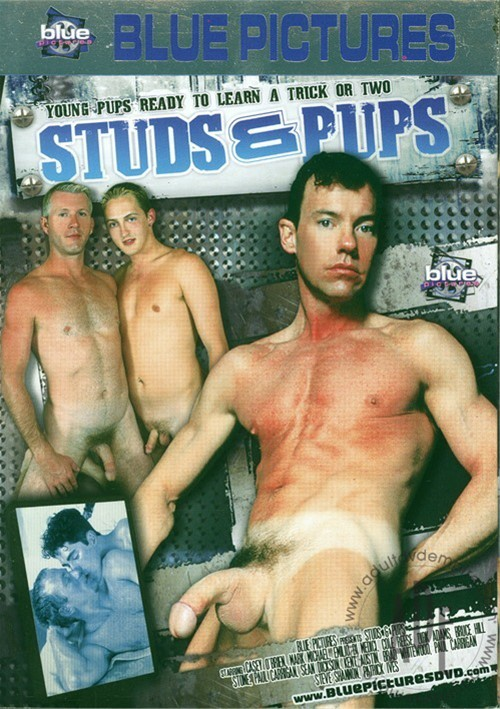 Studs & Pups Boxcover