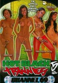 Hot Black Trannies 5 Porn Video