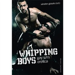 Whipping Boys: Gay S/M Erotica Sex Toy