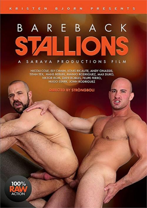 Bareback Stallions Cover Front