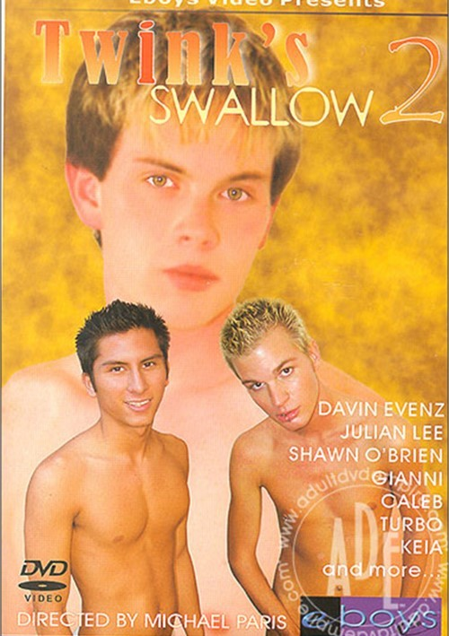 Twink's Swallow 2 Boxcover