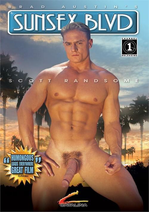 Sunsex Blvd Boxcover