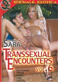 Transsexual Encounters Vol. 6 Porn Video